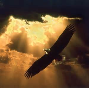 Rise up on wings like Eagles
